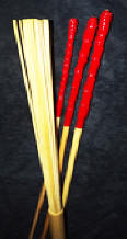 Red Fusion Set Canes from Canes4Pain