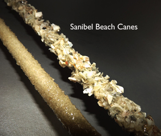 Sanibel beach canes by canes4pain.com covered with sharp sea shell seashell shards pieces